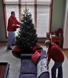 GMS delivers a Christmas Tree to your home